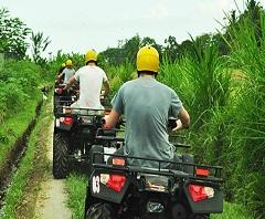 Paket Tour di Bali | ATV dan Kintamani