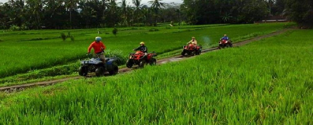 Paket Bali Petualangan Tour   Wisata ATV Ride
