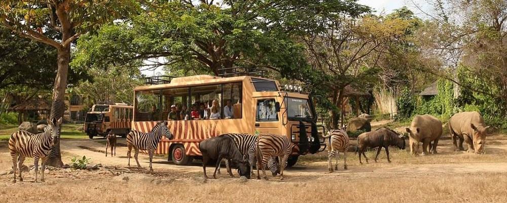 Paket Bali Petualangan Tour | Wisata Bali Safari dan Marine Park