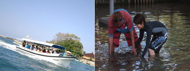 Water Sports | Glass Bottom Boat dan Turtle Islands